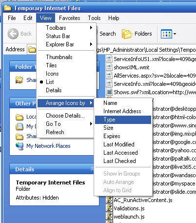 Arrange View Type Files.jpg